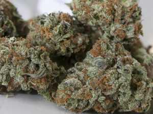 LA Confidential – Indica | Buy Marijuana Online | Buy Weed