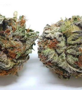 Marijuana treats Anorexia Nervosa