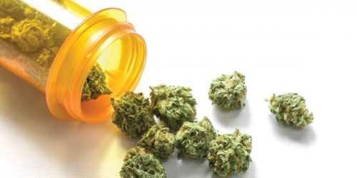 Popular Medical Marijuana strains of 2019