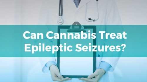marijuana as an anti-seizure was revealed