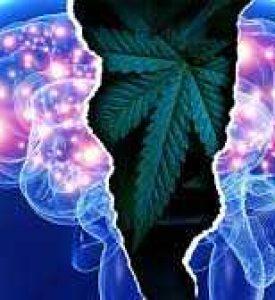 Cannabidiol as an Adjunctive Treatment for Schizophrenia